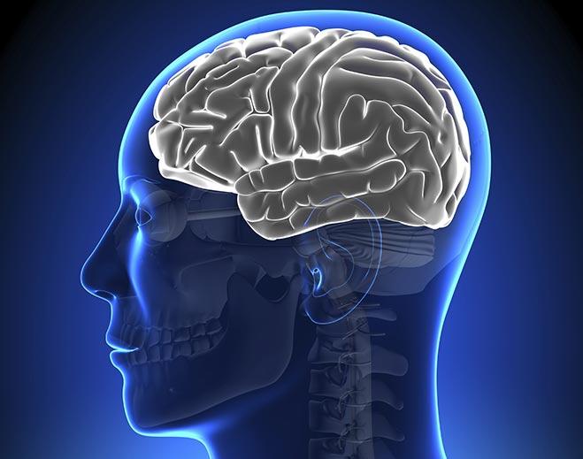 neurology-brain-disorders/